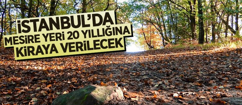 İstanbul'da mesire yeri 20 yıllığına kiraya verilecek