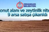 Orhangazi Belediyesi konut alanı ve zeytinlik nitelikli 9 adet taşınmazı ihale usulü ile satışa çıkardı