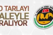 Edirne/İpsala'da 30 adet tarla Vakıflar Bölge müdürlüğünden kiraya verilecektir
