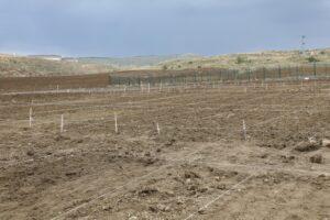 Tohumlar toprakla buluştu