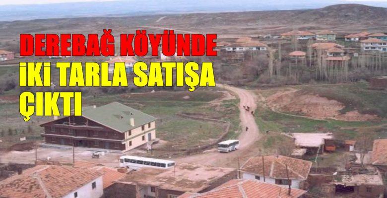 Derebağ köyünde iki tarla satışa çıktı