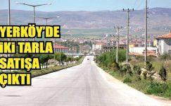 Yerköy'de İki tarla satışa çıktı